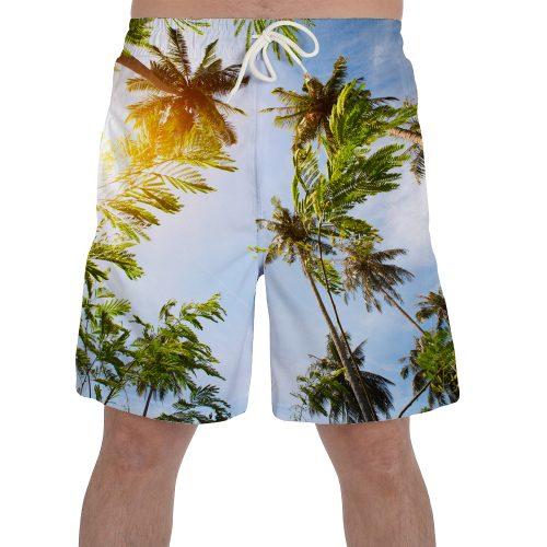 Coconut Tree Shorts New